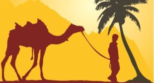 Join Morocco Private Travel at Sun-Trails