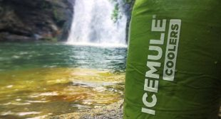 Shop Stylish and Portable Cooler Bag from ICEMULE Coolers