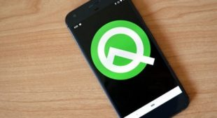 Everything You Need to Know About Android Q – norton.com/setup